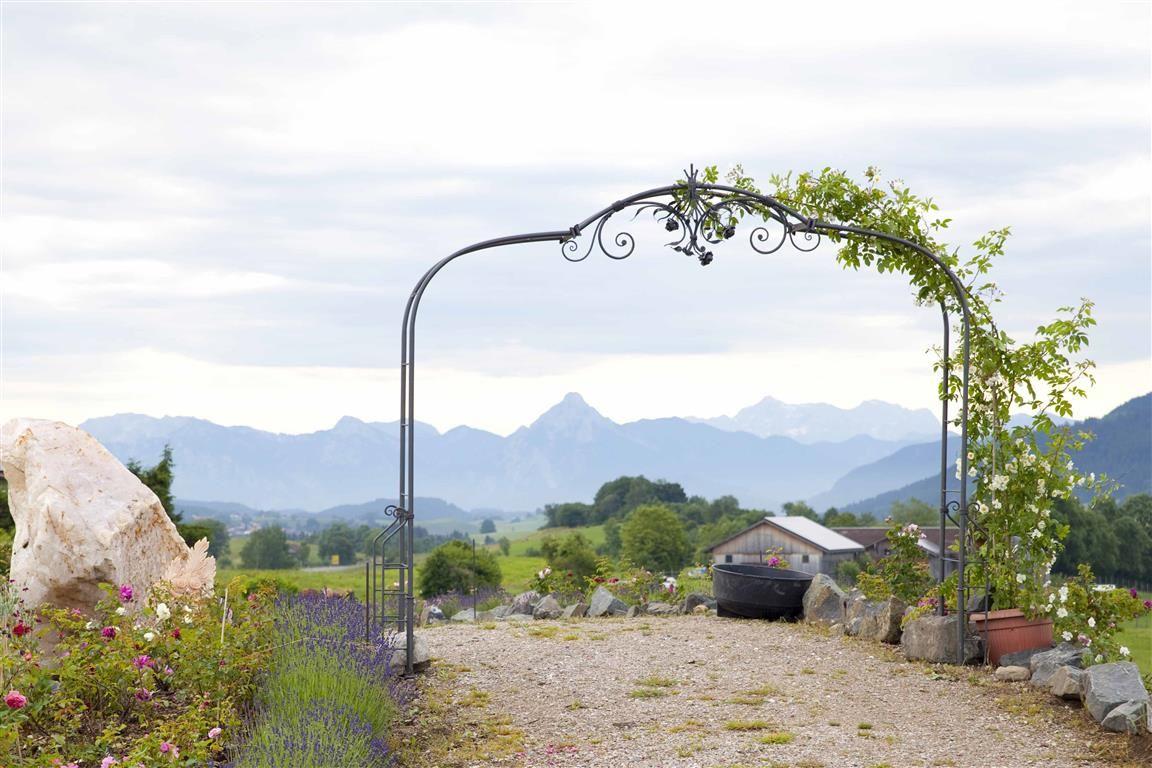 PRIMAVERA LIFE GMBH, Rose, Rosenbogen, Natur, Berge, Alpen ...