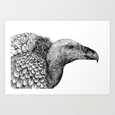 White-backed Vulture Art Print by Rachel Caldwell - $17.00