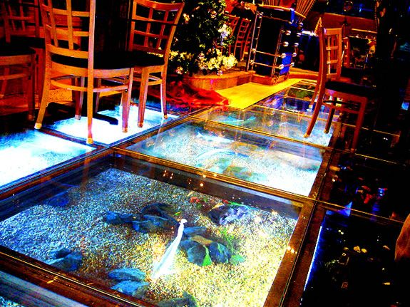 Floor Aquarium Lago