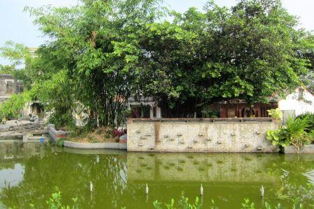 歴史家の前の池 屋上緑化 自然 高解像度で壁紙