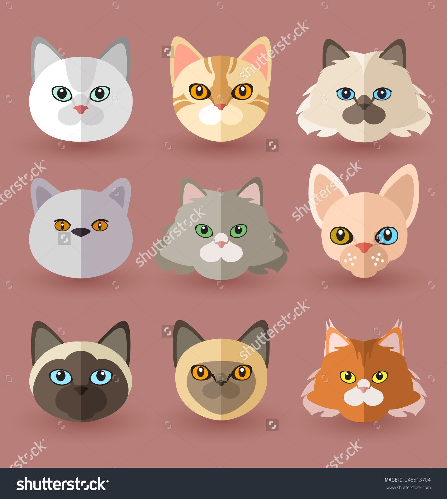 Stock Images Similar To Id 120176839 Cat Siamese Breed Vector