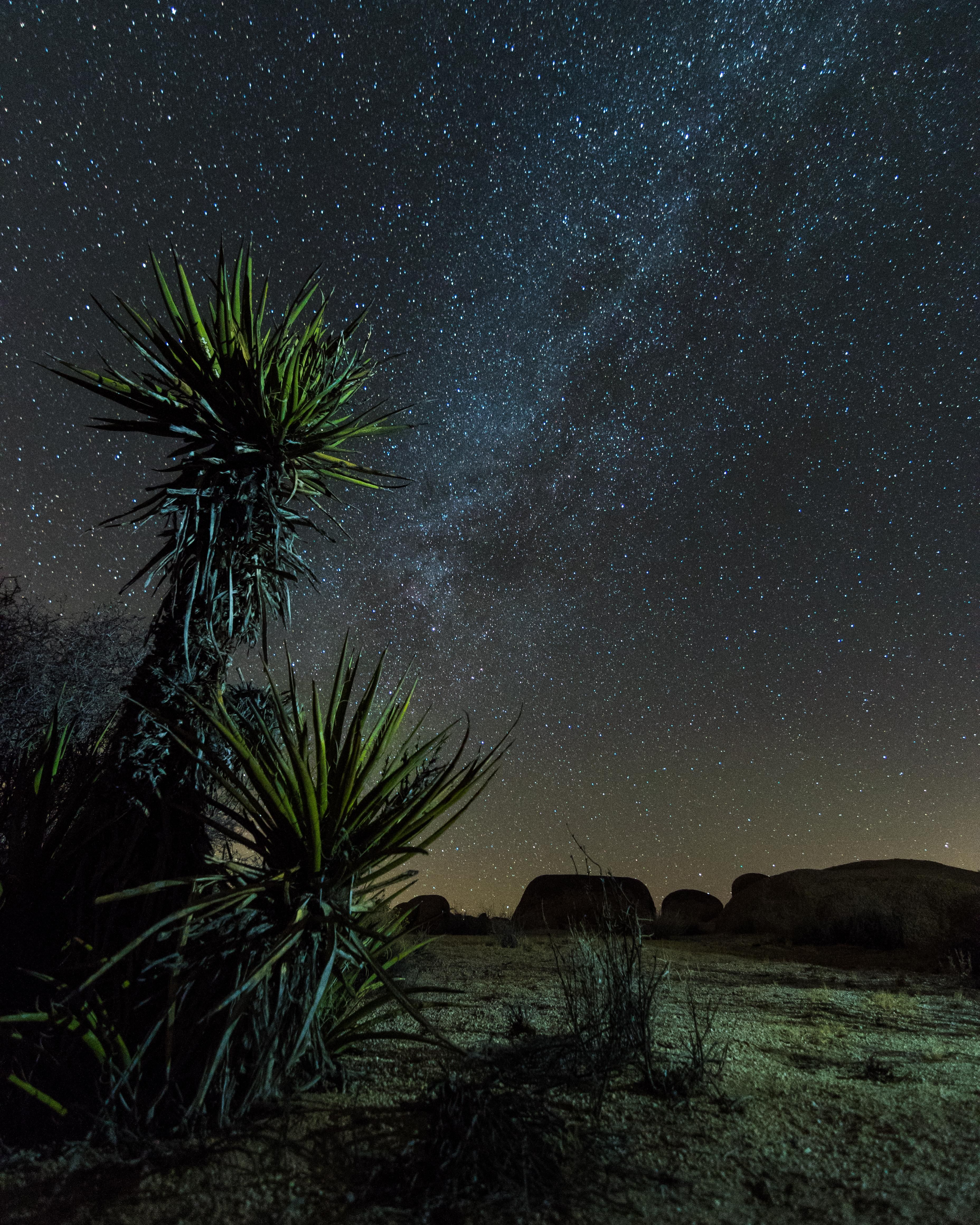 [3712  4640] Milky Way in Joshua Tree National Park [OC] -Please check the website for more pics