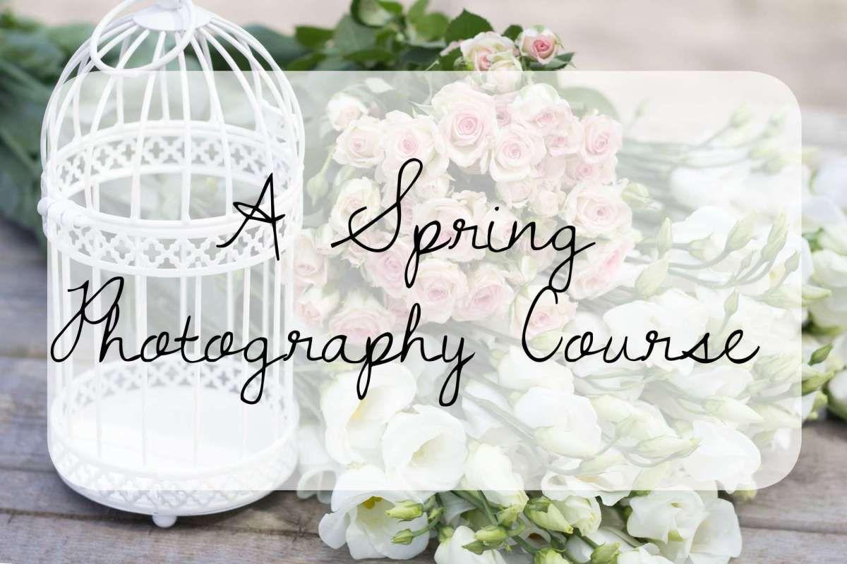 A Spring Photography Course