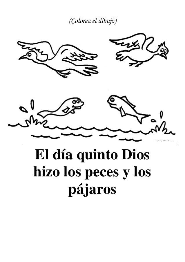 Colorea el dibujo)El día quinto Dioshizo los peces y los pájaros ...