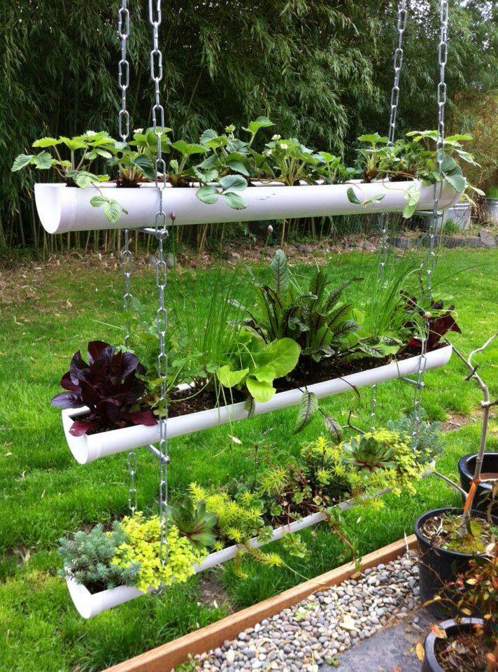 Ordinaire Drain Pipe Gardening