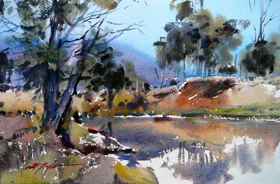 David taylor artist award winning australian watercolour