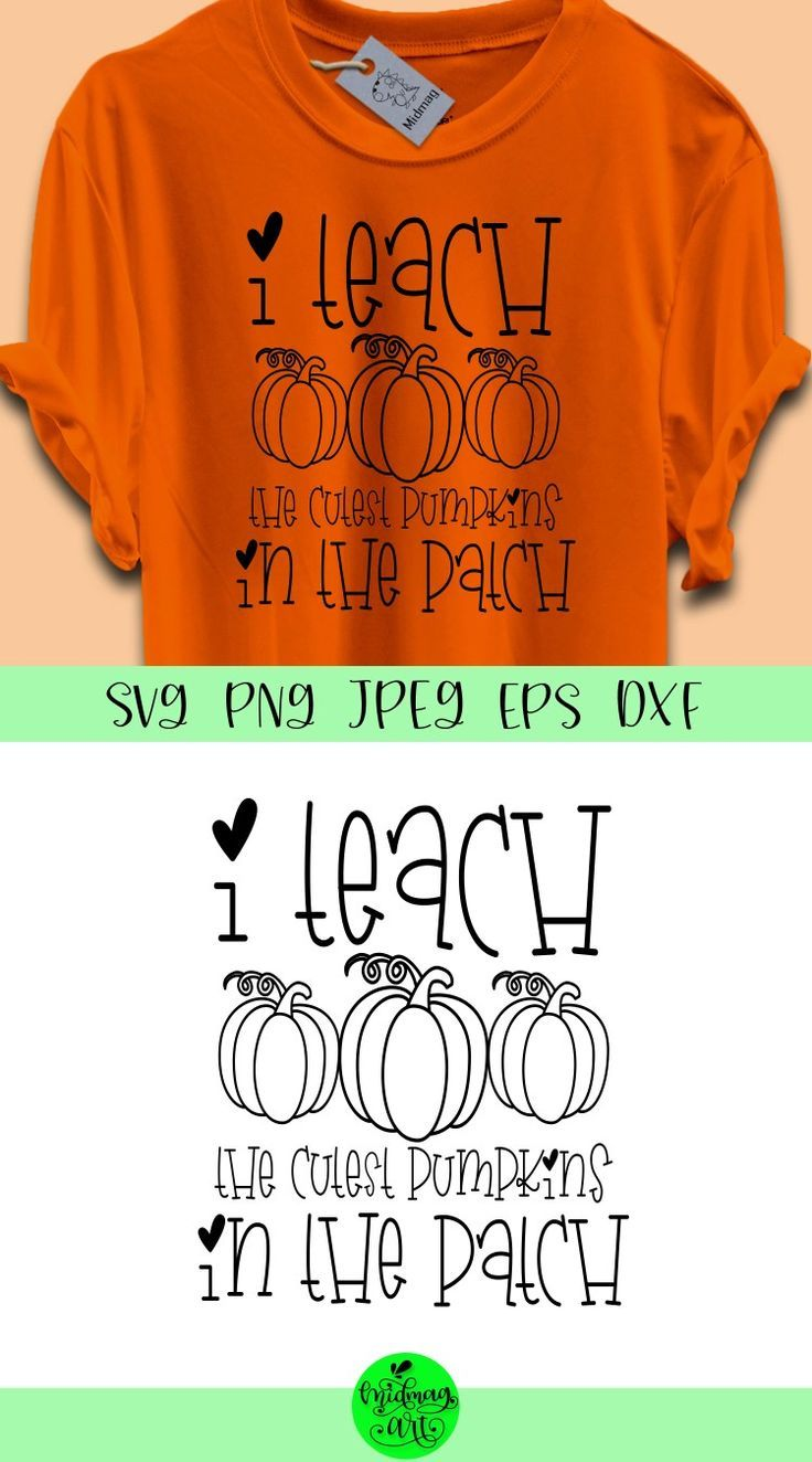 I teach the cutest pumpkins in the patch svg, fall svg