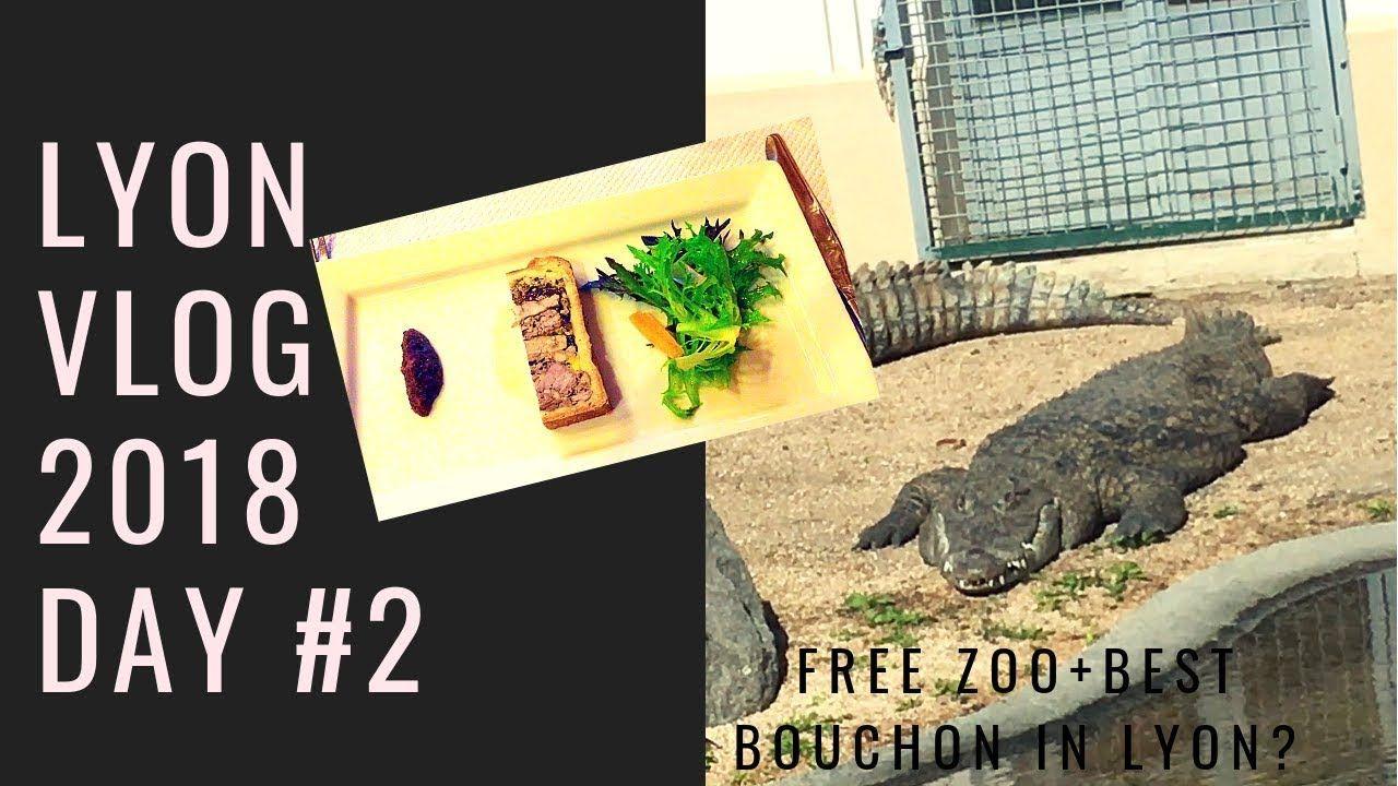 Lyon Vlog 2018 Day 2 Free Zoo Parc De La Tete D Or