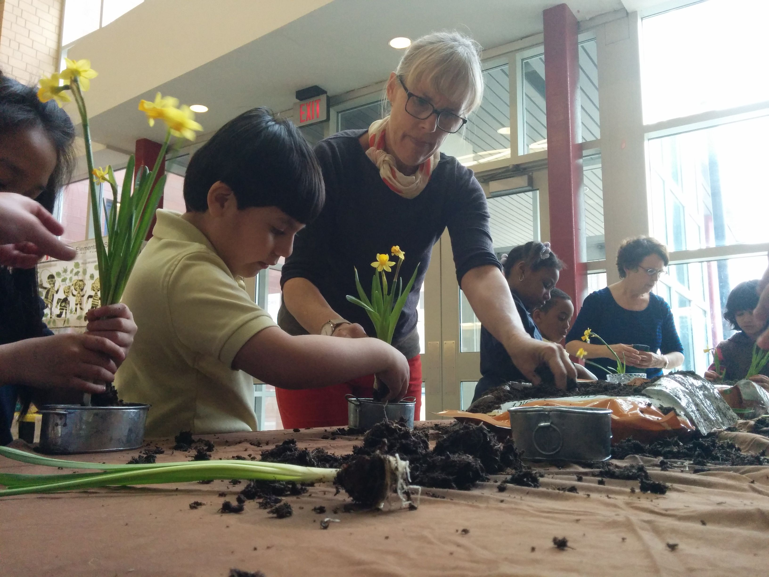 Afterschool Programs | Waldorf-based, Arts-Integrated Learning Experience | Cairn Hill for Urban Communities