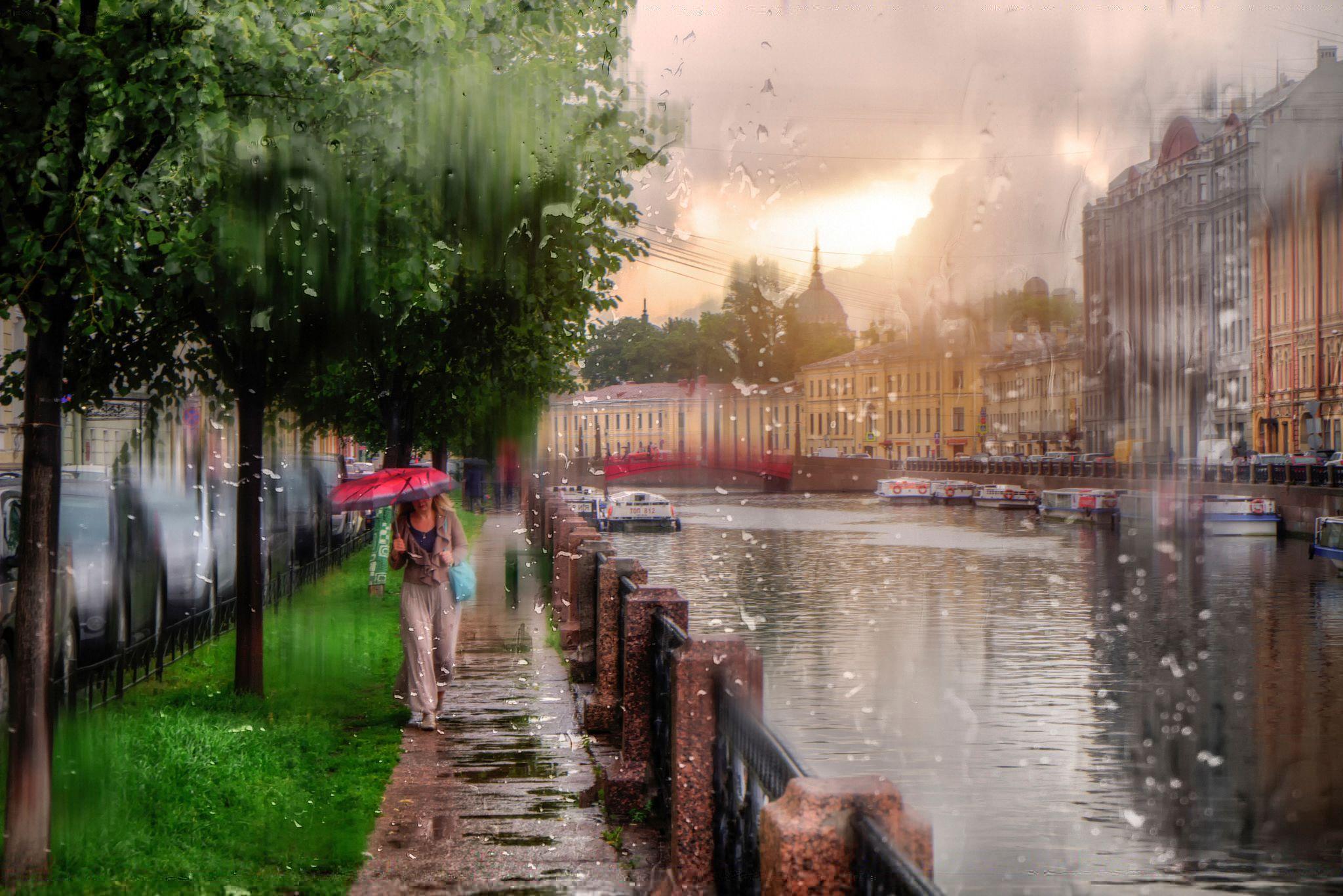 щенков вышлем фото город под дождем разговаривает, обычно произносит