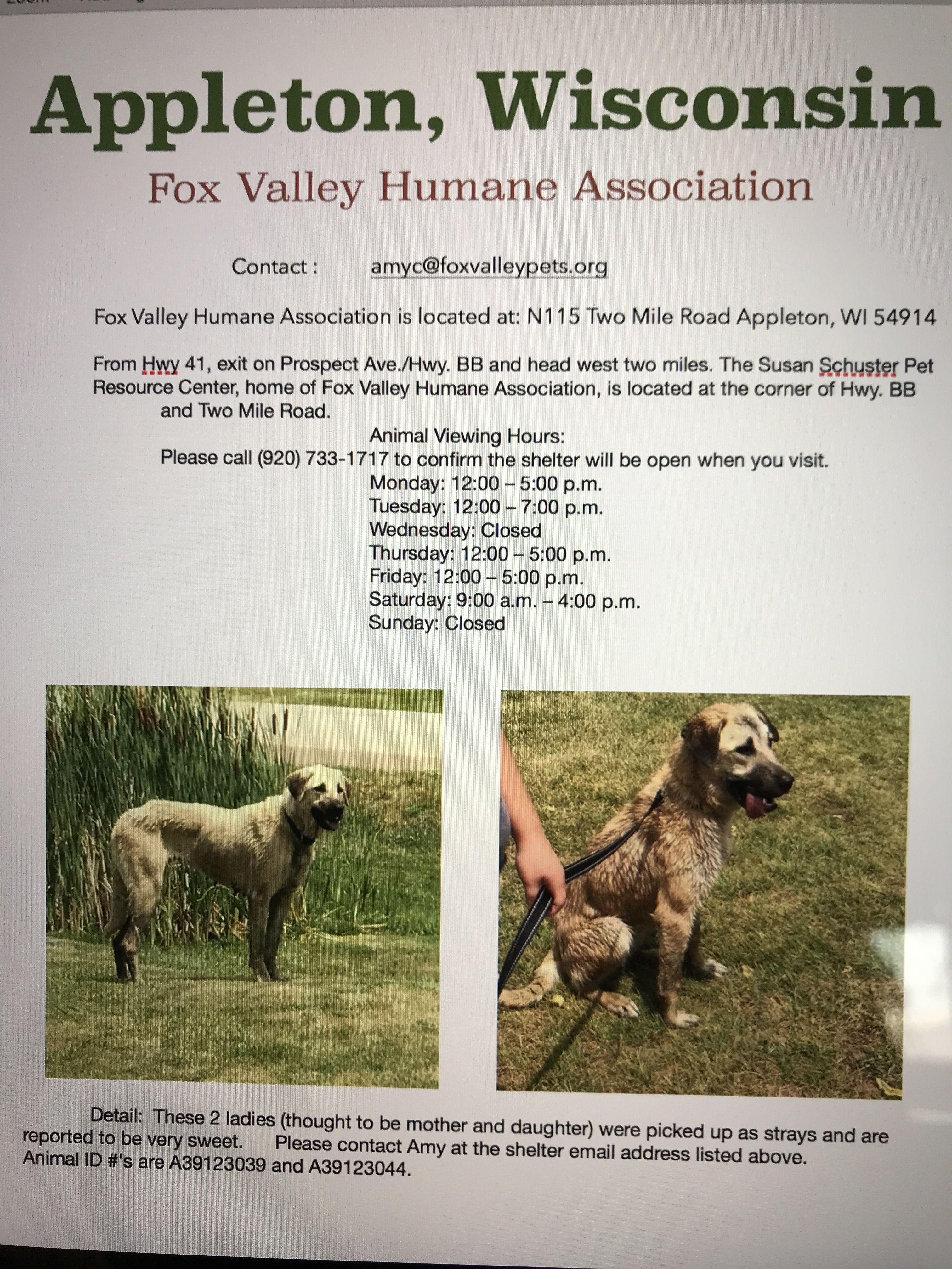 Appleton Wi Fox Valley Humane Nasrn Courtesy Post Appleton Wi