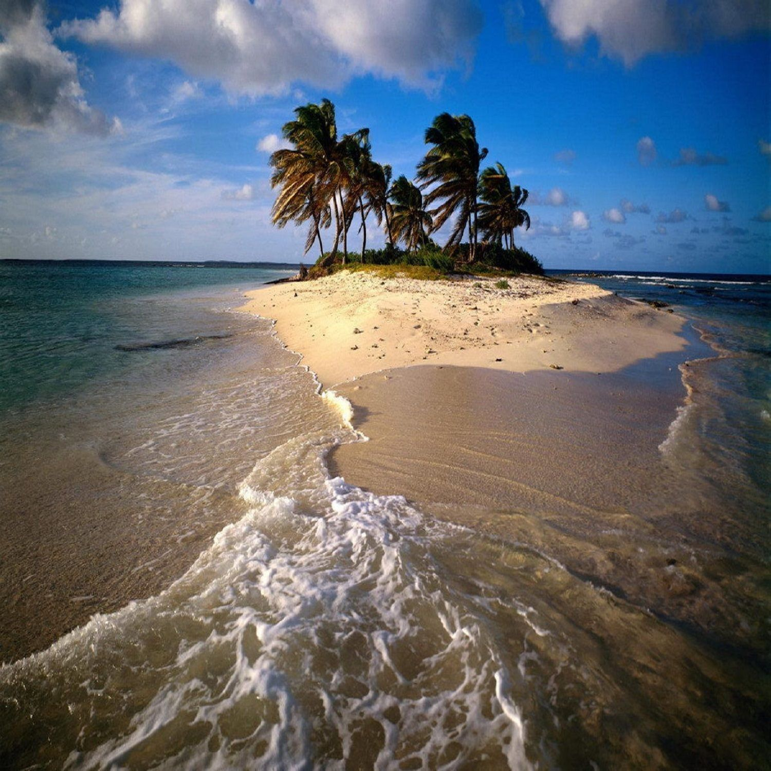 Deserted Island Beach: Details About Caribbean Dream Fragrance Oil Candle/Soap