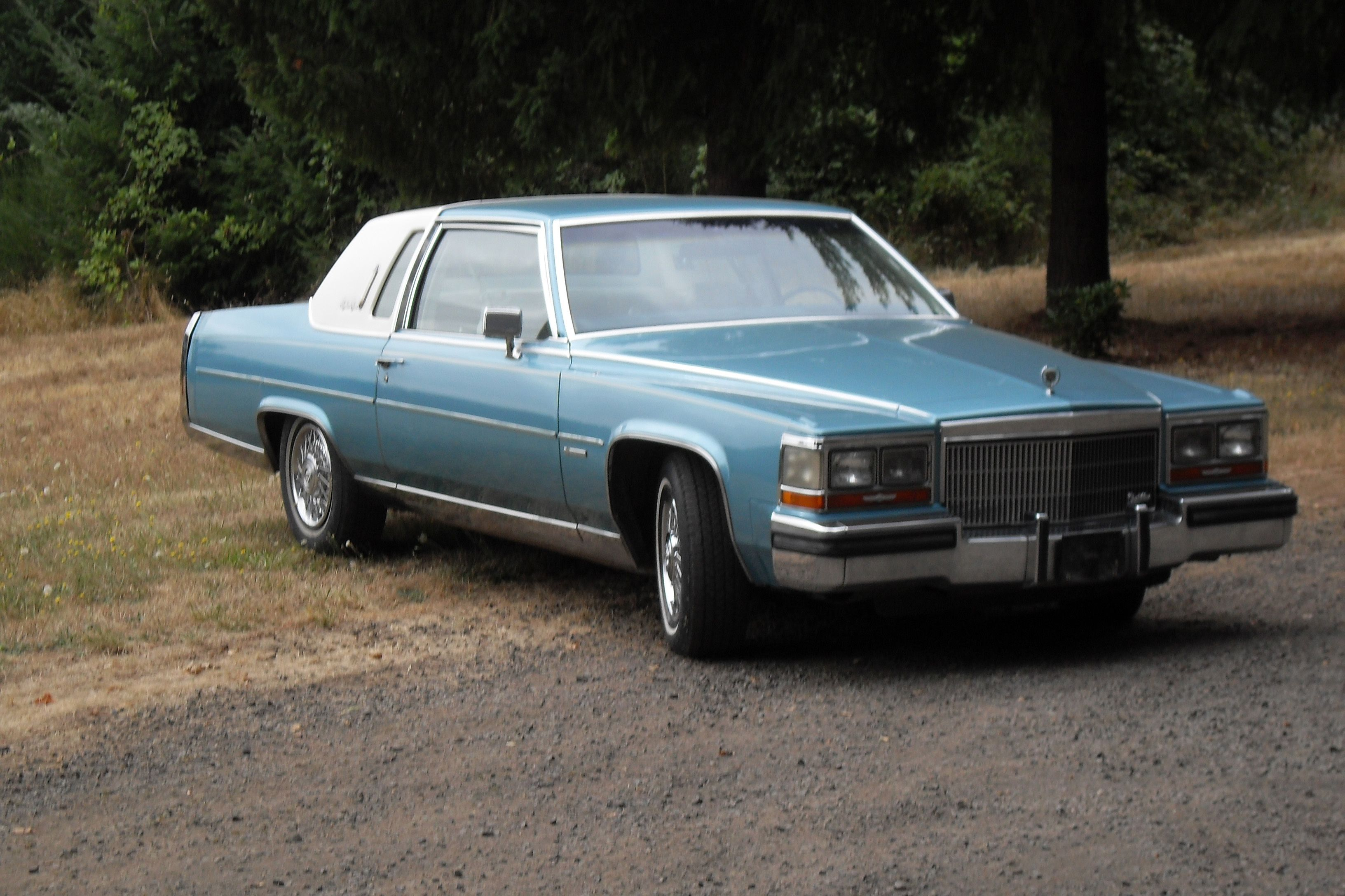 Thomas's 1981 Cadillac Fleetwood Brougham de Elegance-coupe' a very