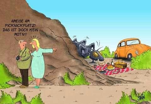 Ameise Uli Stein Lustige Cartoons Lustige Bilder Zeichentrick