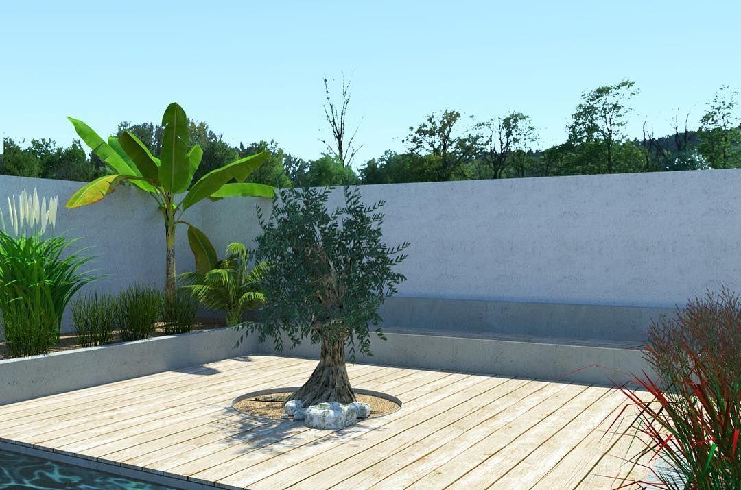 3d Visualisierung Eines Mediterranen Hofgartens 3d Visualisation Of A Mediterranean Courtyard Gardendesign Gartendesign Garden Garten Gart Resim