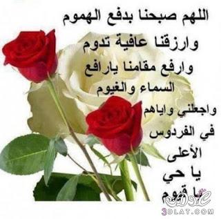 ادعية الصباح بالصور صور صباح الخير مكتوب عليها ادعية دينية للأحباب والاصدقاء Good Morning Flowers Plants