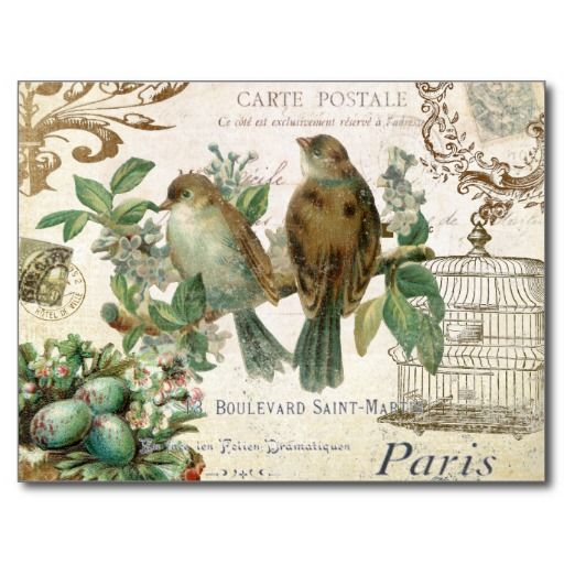 This Deals Vintage French Birds postcard This site is will advise you where to buy