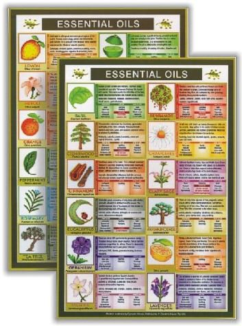 Essential Oils Mini Chart for quick reference