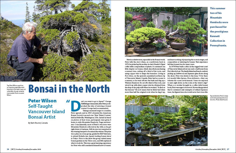 Bci Magazine Bonsai Bci Bonsai In The North Peter Wilson Self Taught Vancouver Island Bonsai Artist Bonsai Vancouver Island Plants