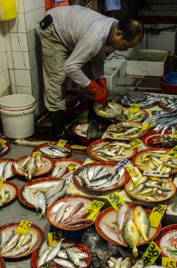 Fish Market, Jordan Road, Yau Ma Tei, Kowloon, Hong Kong ...