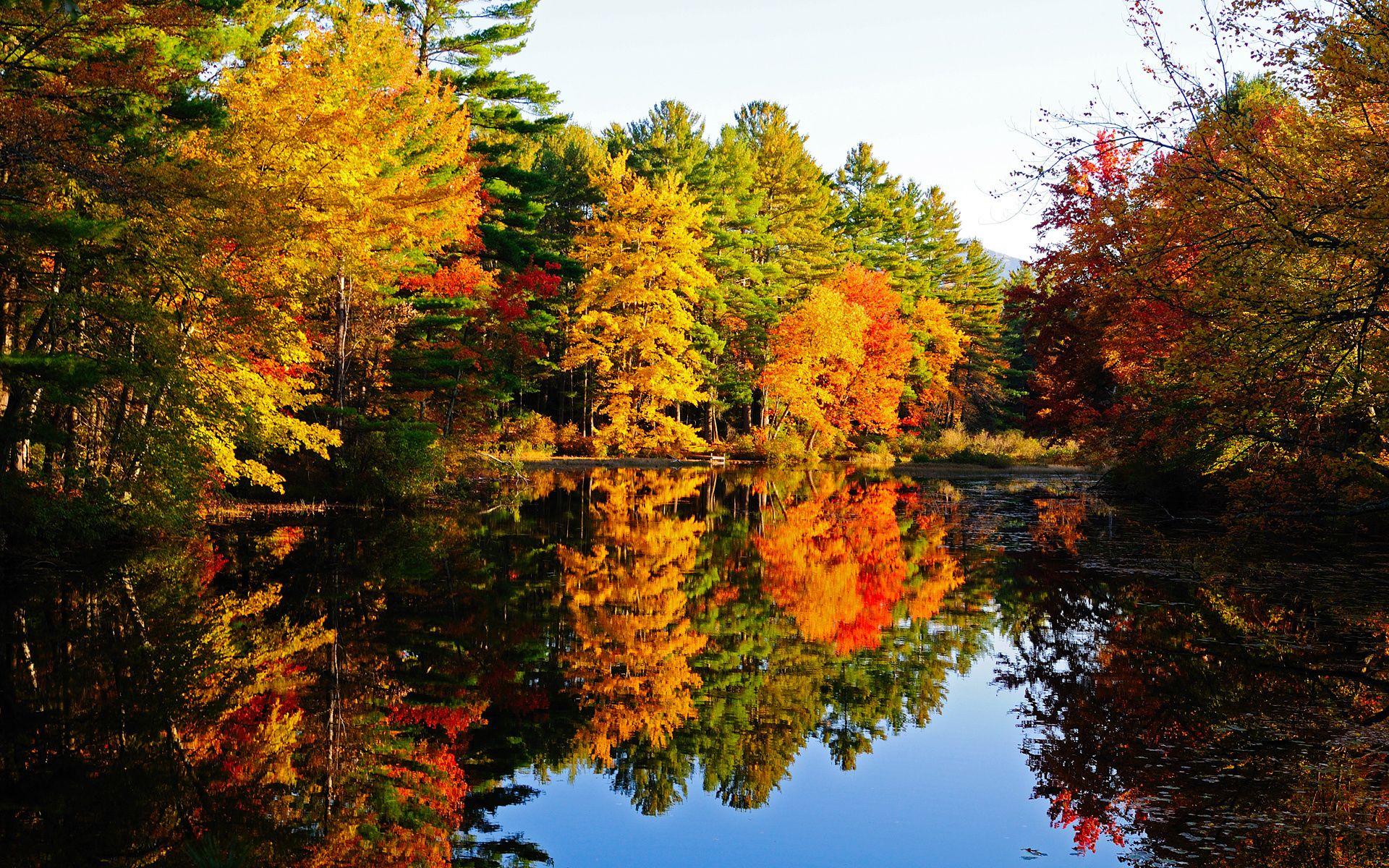 Открытки сентябрь природа