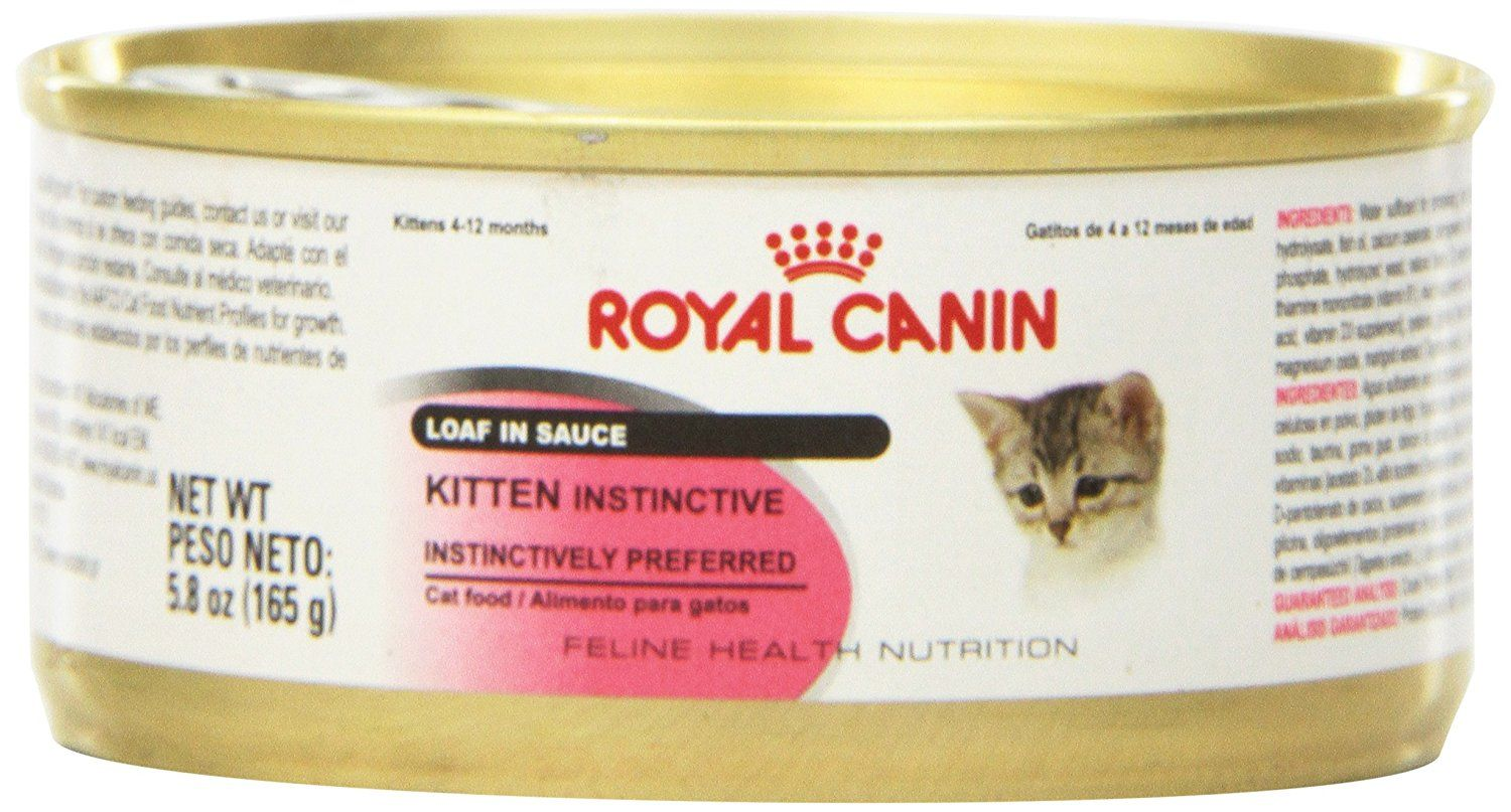 Royal Canin Feline Health Nutrition Kitten Instinctive Loaf In Sauce Canned Cat Food Visit The Image Link More Details This Is An Affi Canned Cat Food Cat Nutrition Dry Cat Food