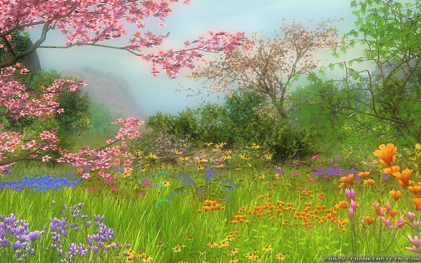 Wonderful Day Spring Scene Wallpapers 1440x900 1440x