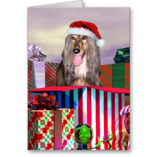 Afghan Hound Christmas Surprise Holiday Card Zazzle Com Afghan Hound Christmas Dog Hound Dog