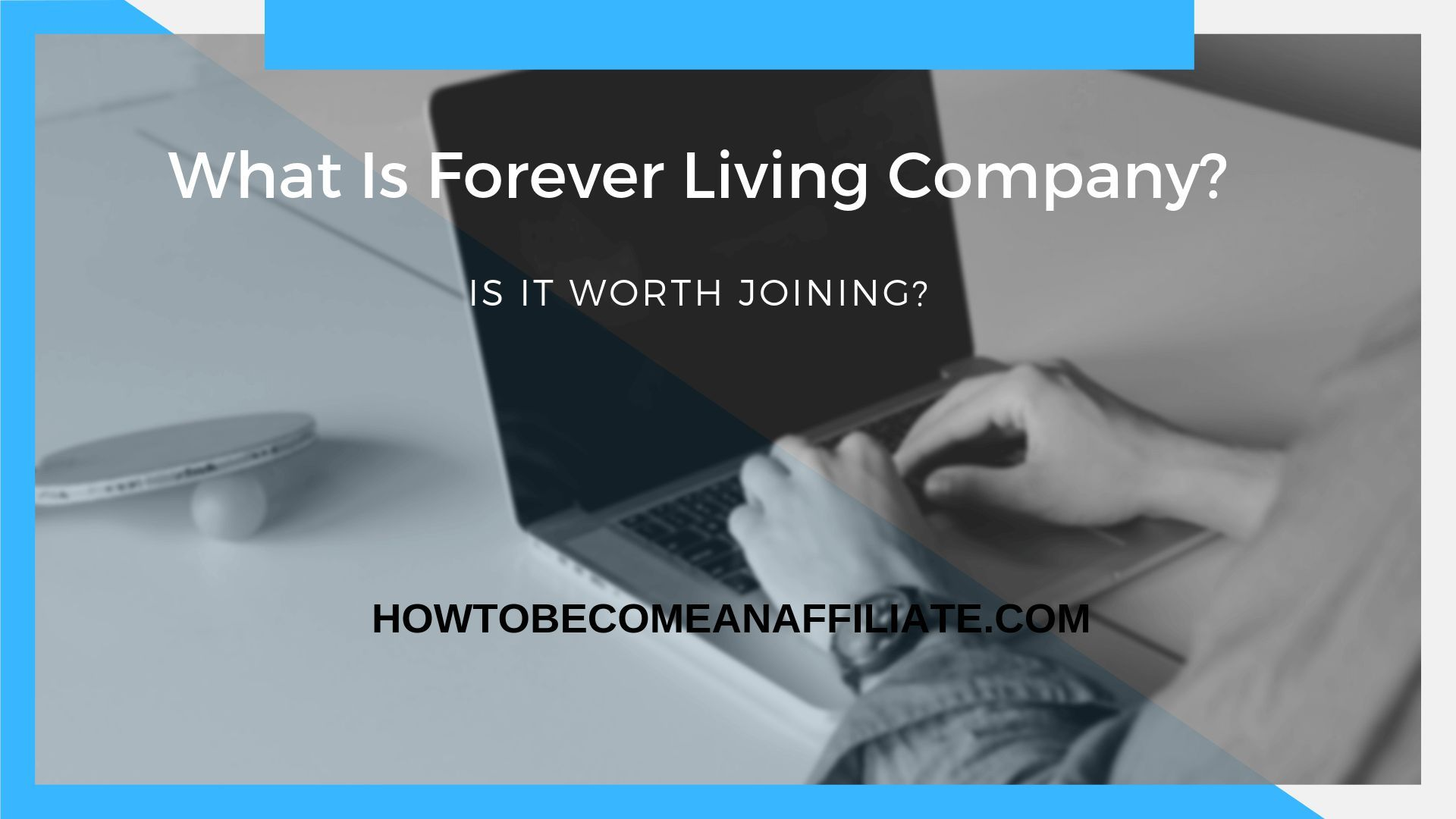 What Is Forever Living Forever Living Company Mlm Plan Mlm Companies