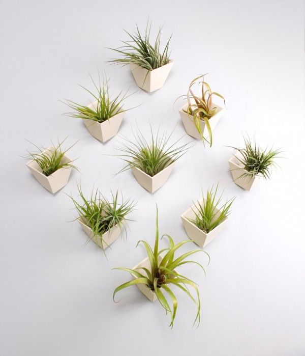 Create your own plant display with this hive planter that turns your wall into a living