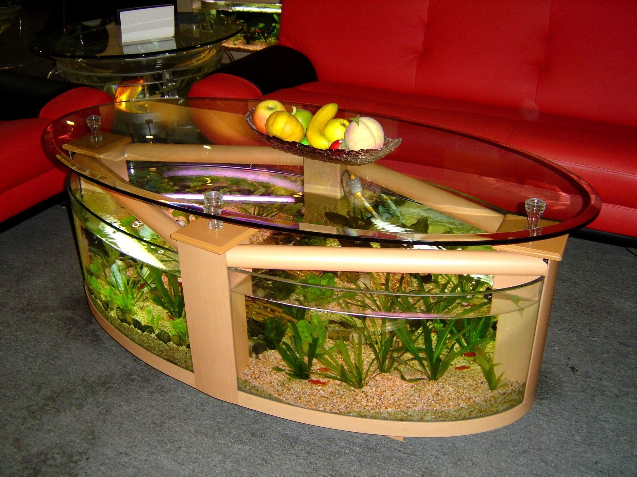 Awesome fish tank living room ideas for oval glass table then awesome eound glass table beside