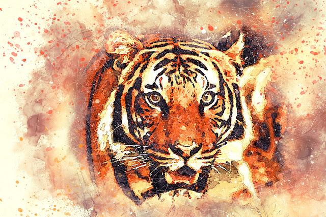 خلفيات حيوانات مرسومة In 2020 Big Box Art Tiger Pictures Tiger Painting