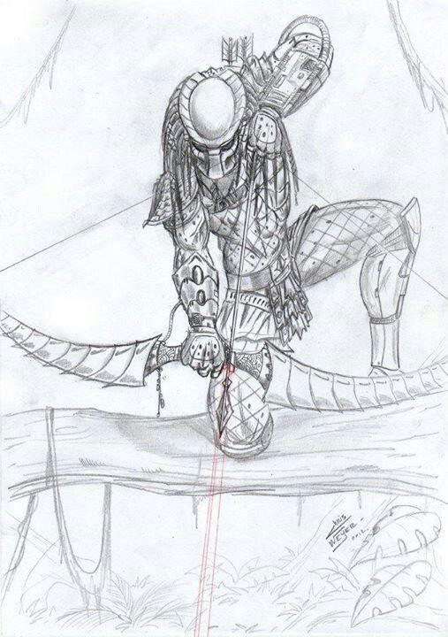 Archer Predator | avp | Pinterest | Depredador, Para dibujar y Separar