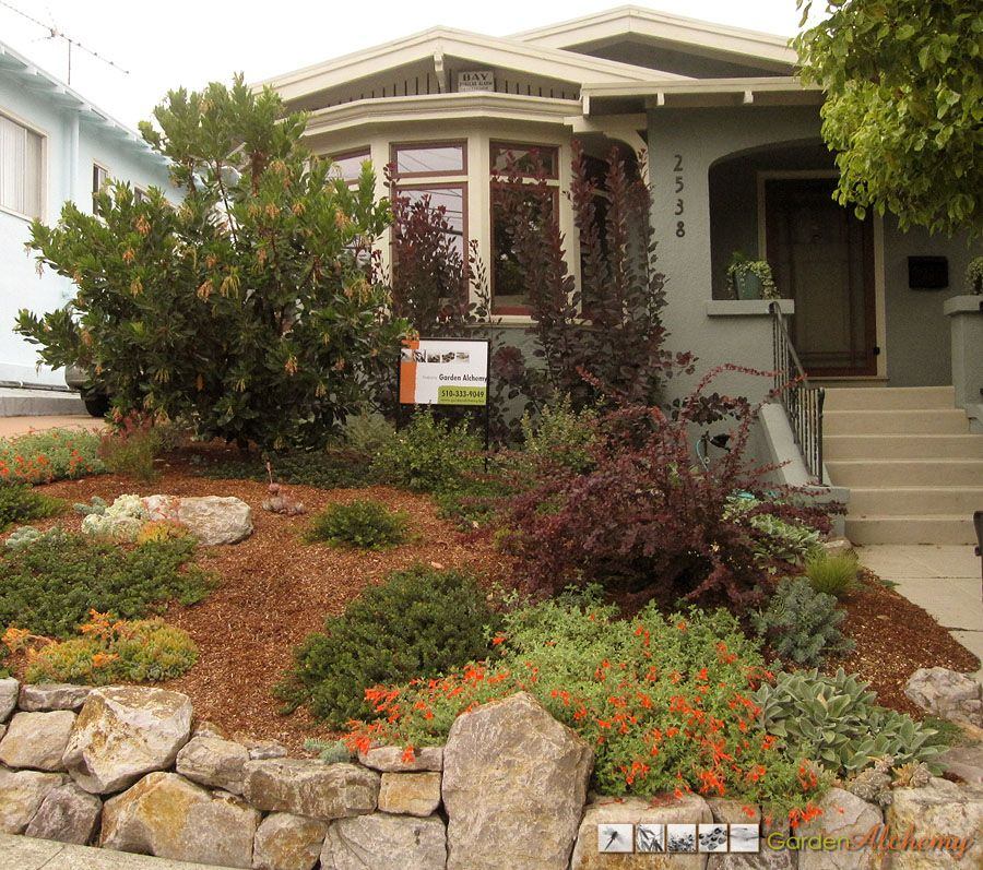 Drought Tolerant Front Yard: The Front Lawn Turf Was Removed And Replaced With Drought