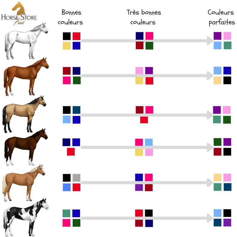 Les bonnes couleurs by Horse Store Privé
