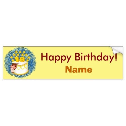 18 year old birthday custom name bumper sticker 18th birthday party birthdays and birthday party ideas