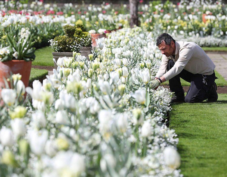 (WhatKateWore) Twitter White gardens