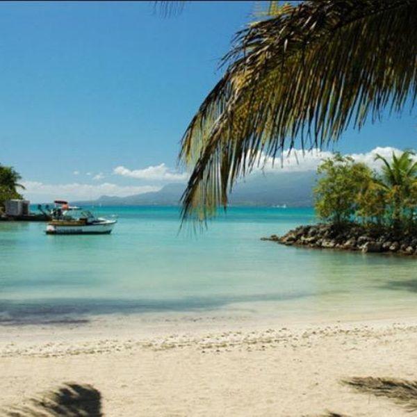Guadeloupe Beach: Pin By Elena Aldynool On Beach In 2020