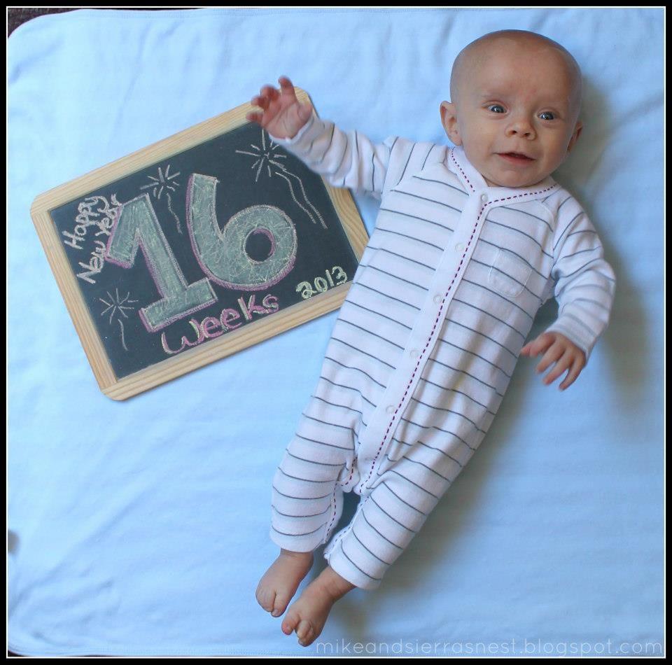16 weeks. Baby blog Baby blog, Baby puppies, Baby onesies