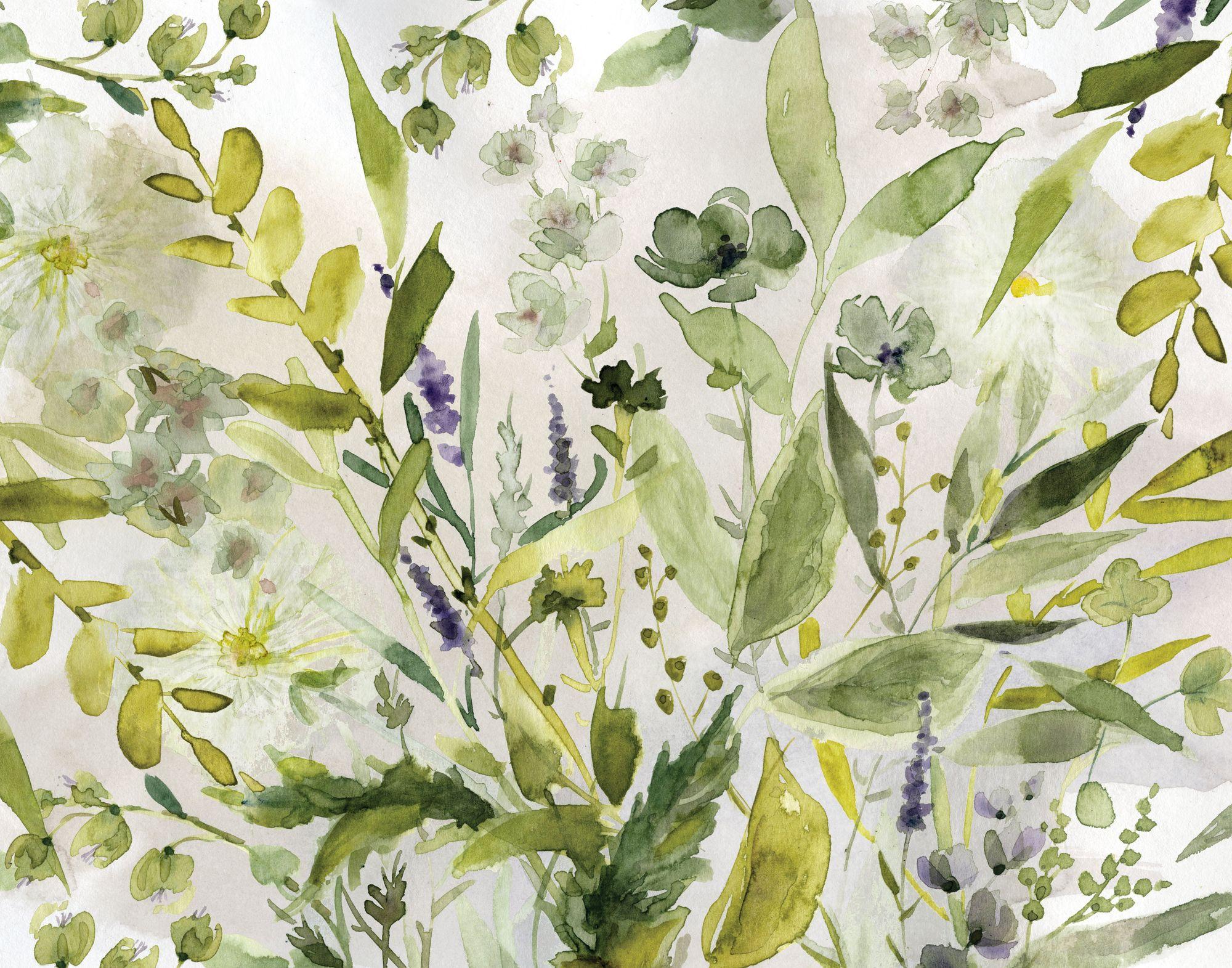 Olive Green Plants Wallpaper by Carol Robinson Wallsauce