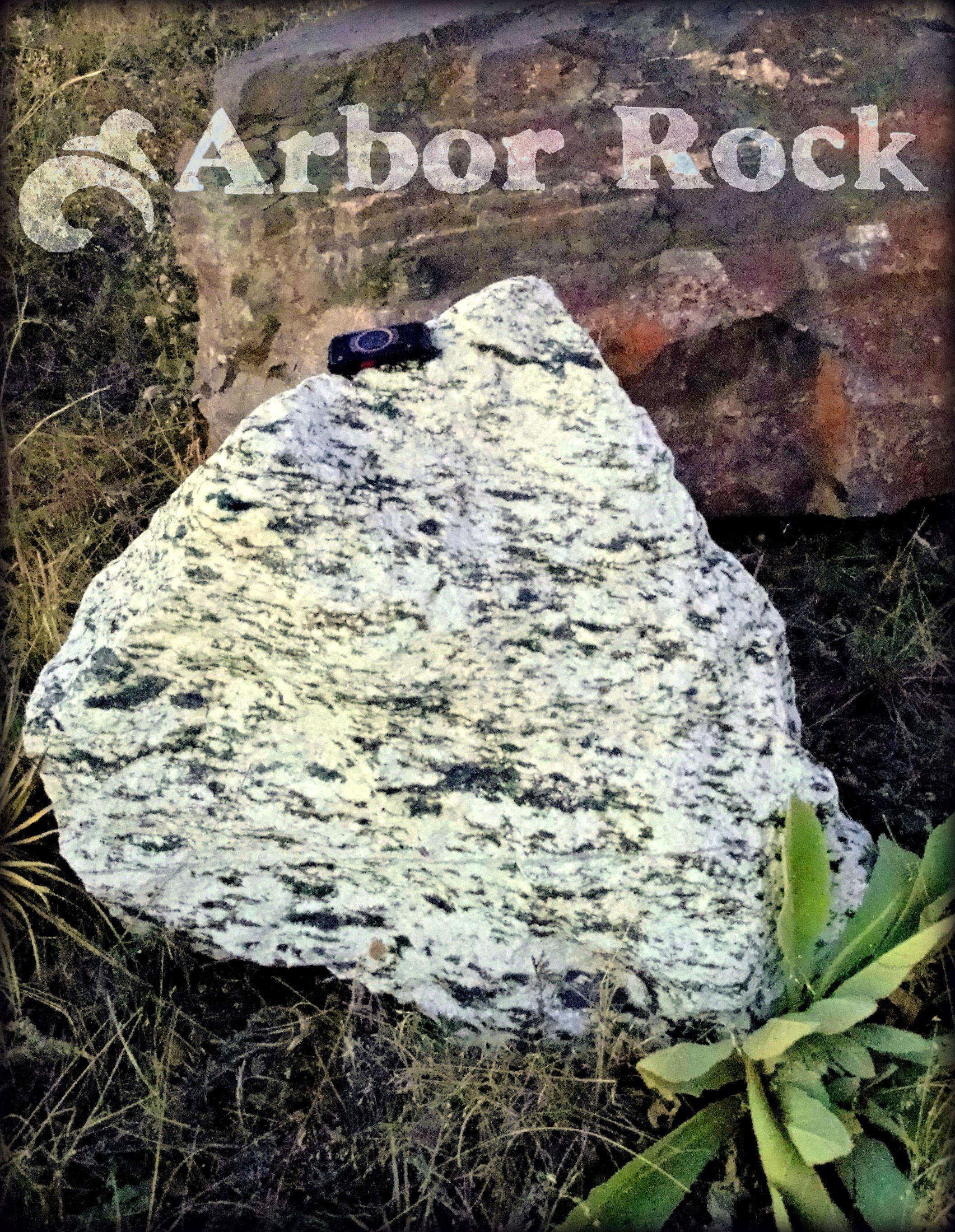 White Quartz With Black Amphibolite Arbor Rock