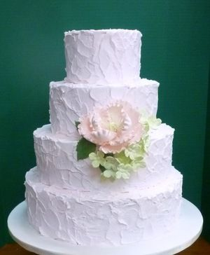 Fancy Cakes by Leslie. Gorgeous.