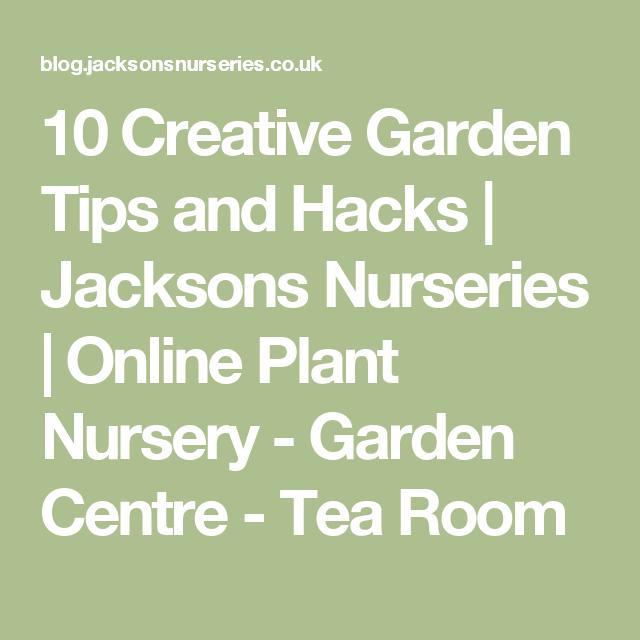 10 Creative Garden Tips And Hacks Jacksons Nurseries Online Plant Nursery Centre