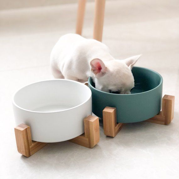 Nordic Pet Bowl Dog Bowl Cat Bowl Dog Bowls Cute Dog Bowls