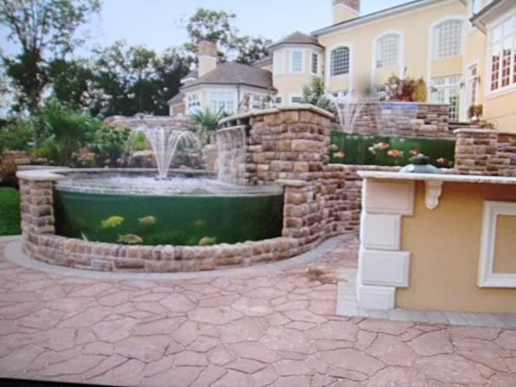 Animal planet tanked koi pond tanked pinterest koi for Koi pond jets