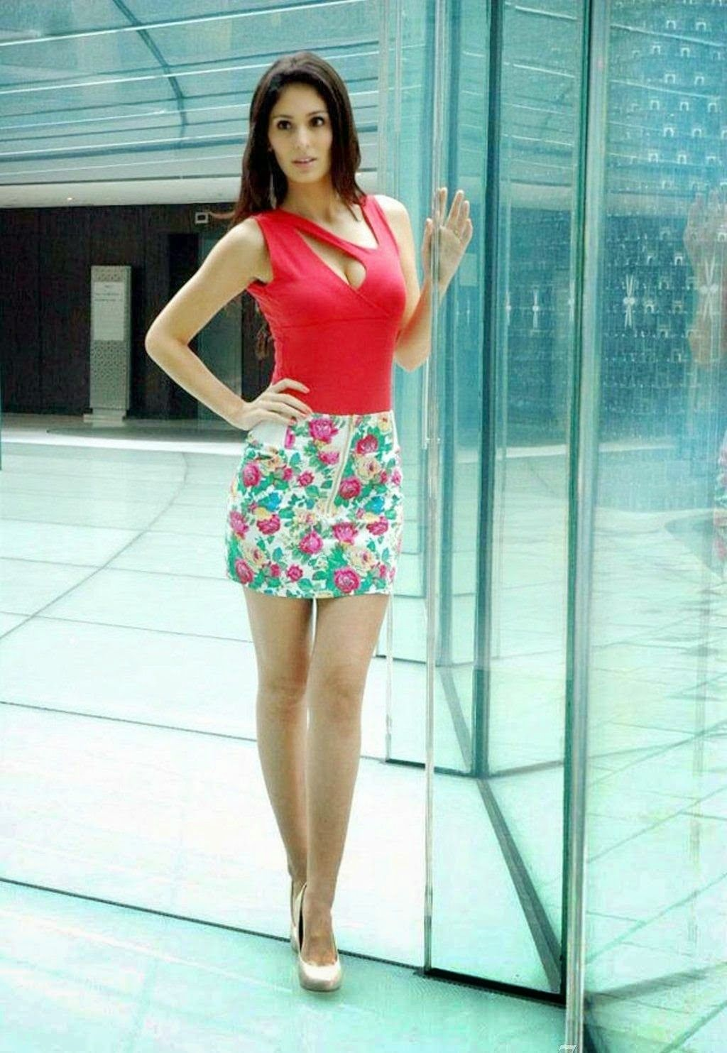 Bruna abdullah hot back bruna abdullah in short dress bruna abdullah - Bruna Abdullah Wearing A Floral Mid Thigh Skirt With Designer Tops For Girls 2015 Collection