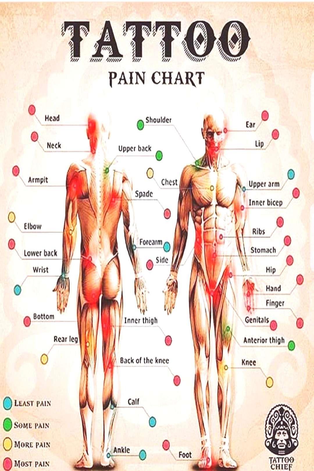 Chest Tattoos Pain : chest, tattoos, Tattoo, Chart