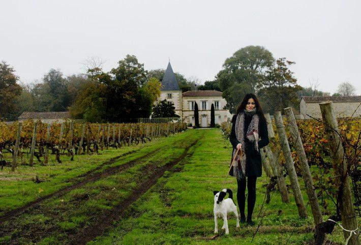 Château Escot, Médoc, France