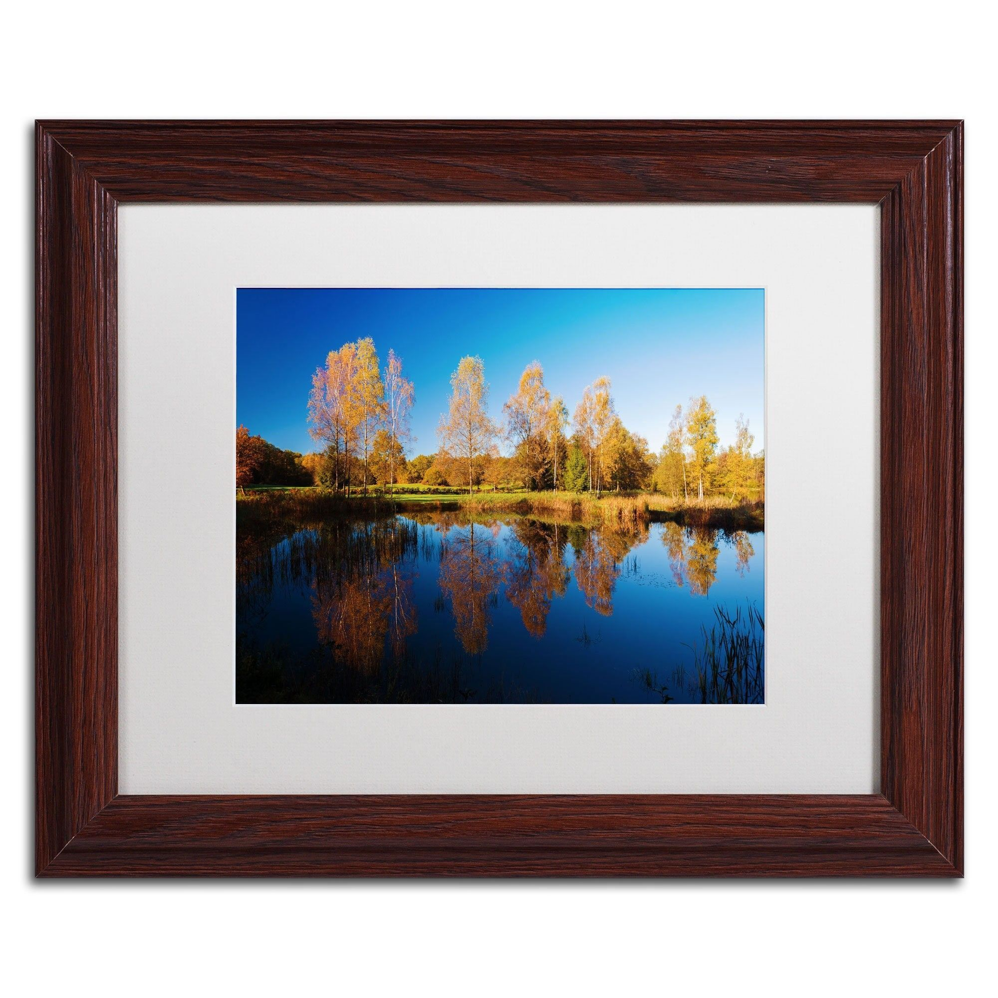 Colors of October by Philippe Sainte-Laudy Matted Framed Photographic Print