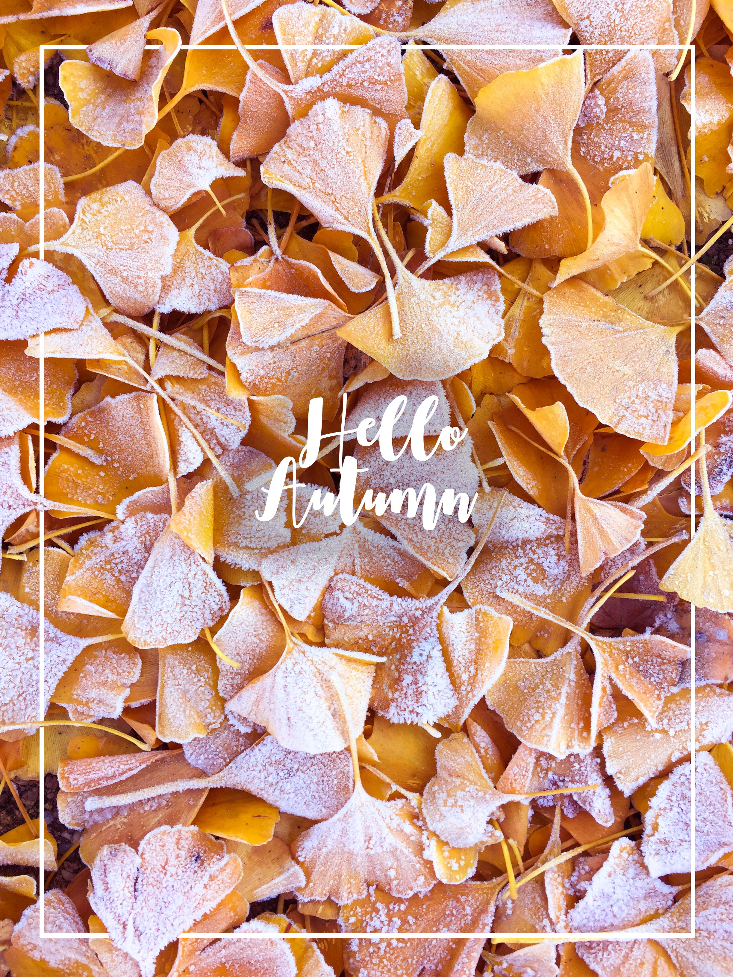 Hello Autumn! Kuschelige Oversize-Pullover, Kerzen, heißer Tee, jede ...